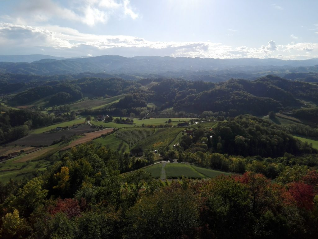 panoramic view from the tower over the styrian wine region