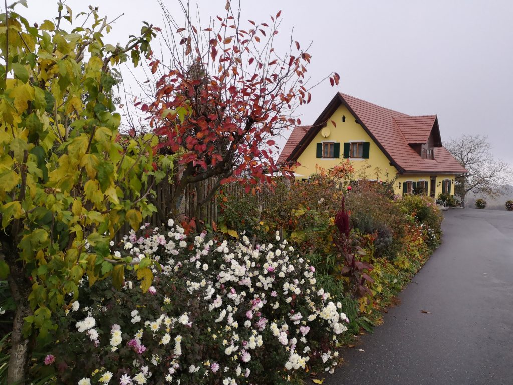 Weingut Pichl from outside