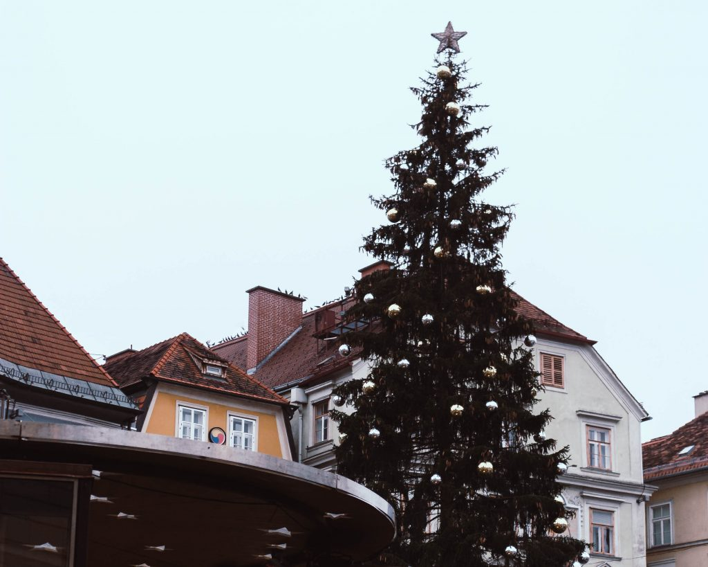 a Christmas tree in the main square